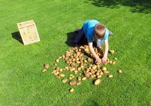 Kartoffelbauern-2